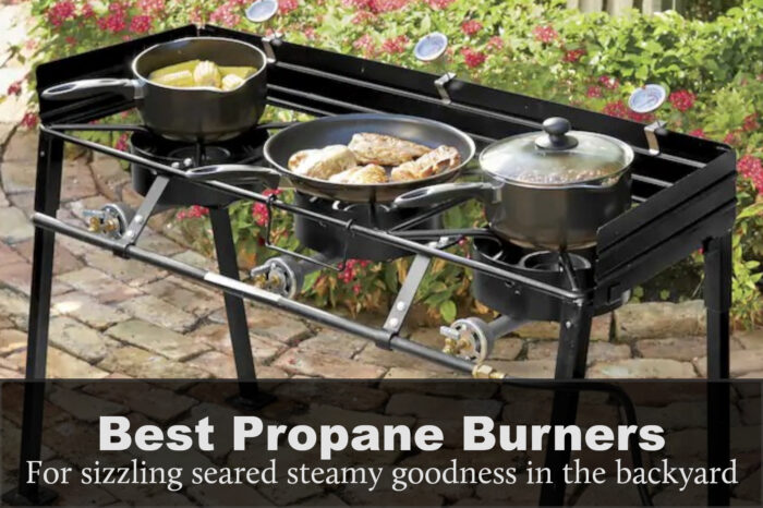 Best Outdoor Propane Burner: Reviews, Buying Guide & FAQs