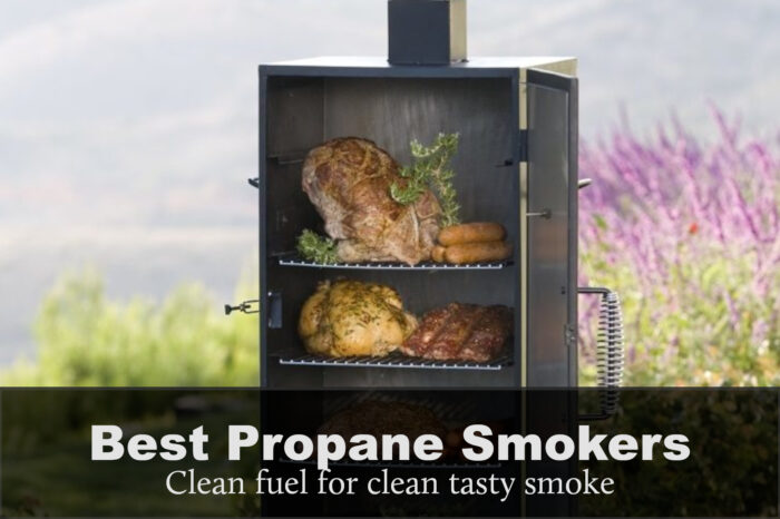 Best Propane Smoker Grill Combo: Reviews, Buying Guide & FAQs