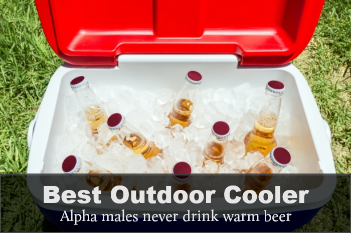 Best Outdoor Cooler: Reviews, Buying Guides & FAQs